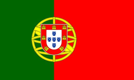 Noclegi u Polaków w Portugalii - flaga