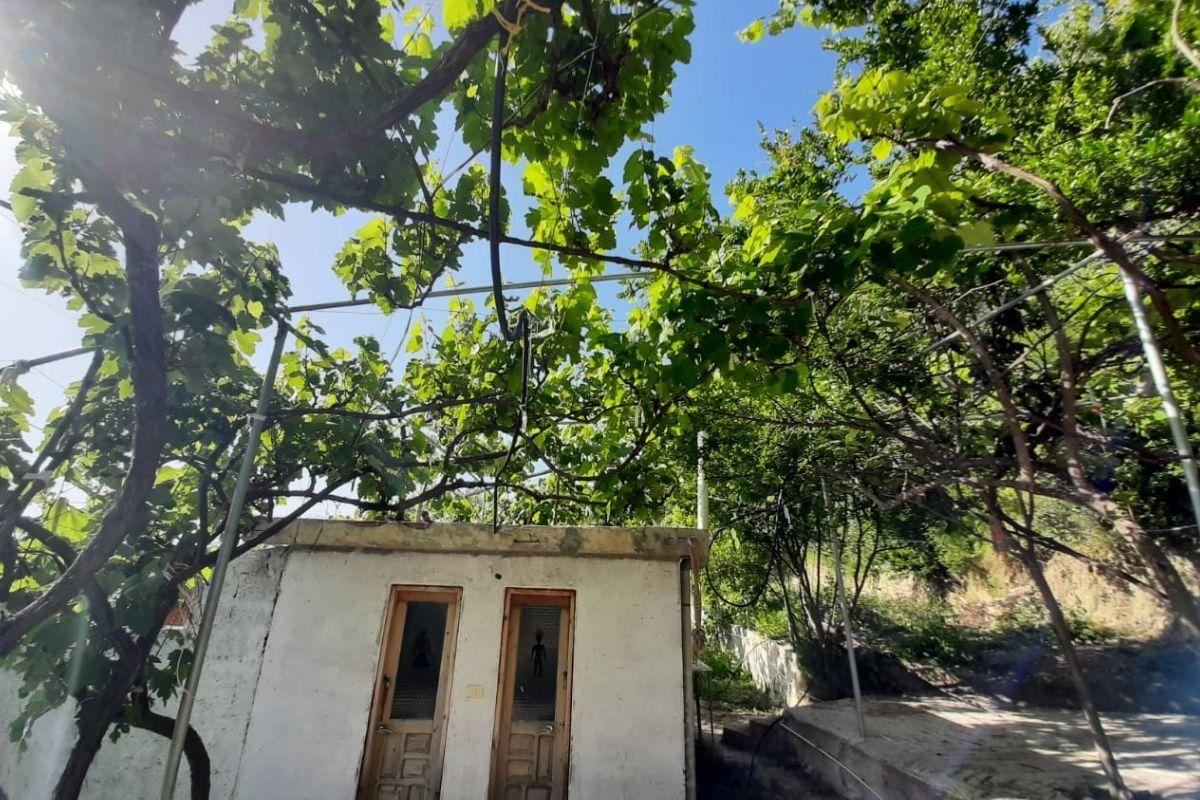 Jungle Camping House w Borsh